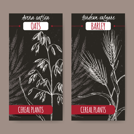 Set of two labels with Barley aka Hordeum vulgare and oats aka Avena sativa sketch on black. Cereal plants collection. Illustration