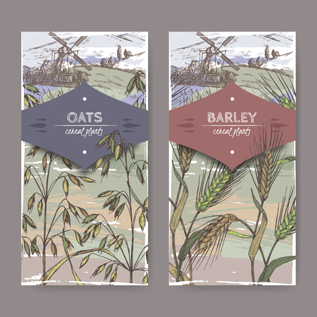 Set of two color labels with Barley aka Hordeum vulgare, oats aka Avena sativa and field landscape sketch. Cereal plants collection. Great for bakery, agriculture, farming design. Illustration