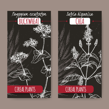 Two labels with buckwheat and chia sketch on black. Cereal plants collection.