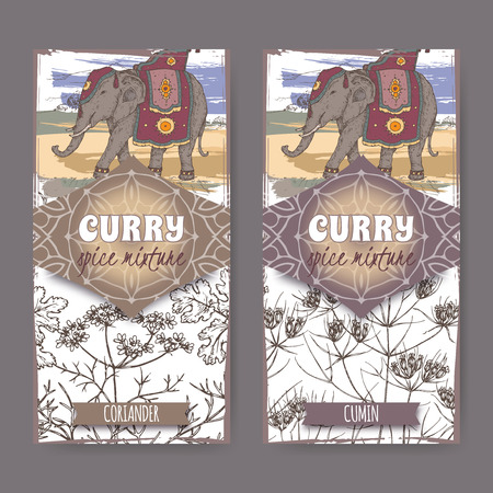 Set of two labels with coriander, cumin and Indian elephant hand drawn color sketch. Curry spice mixture collection. Great for cooking, gardening design.