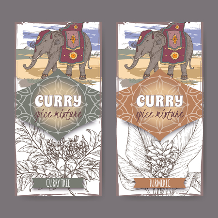 Set of two labels with turmeric, curry tree and Indian elephant hand drawn color sketch. Curry spice mixture collection. Great for cooking, gardening design.