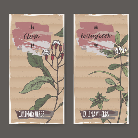 Set of two labels with clove and fenugreek hand drawn color sketch.