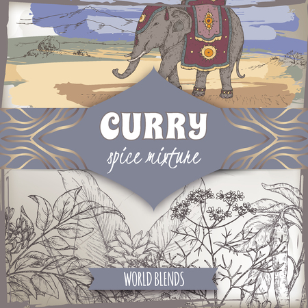 Curry spice mixture template with curry tree, turmeric, coriander, chili pepper and Indian elephant color sketch.