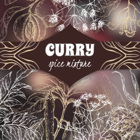 Elegant curry mixture template with curry tree, turmeric, coriander, chili pepper, garlic, clove, nutmeg, cumin sketch. Vettoriali