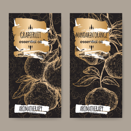 Two labels with citrus paradisi aka grapefruit and citrus reticulata aka mandarin sketch on black background. Great for traditional medicine, perfume design, cooking or gardening. Stock Illustratie