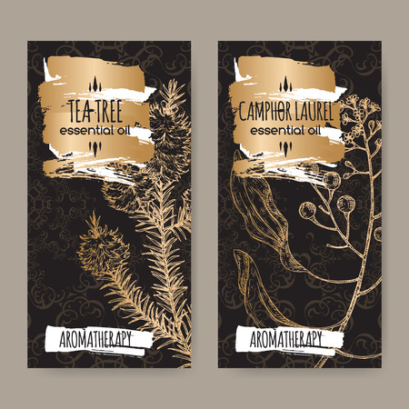 2 labels with tea tree and camphorwood branch sketch on black background. Great for traditional medicine, perfume design, cooking or gardening.