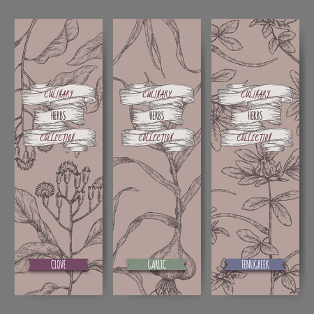 Three labels with clove, fenugreek and garlic sketch. Culinary herbs collection. Great for cooking, medical, gardening design.