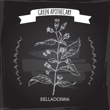Atropa belladonna aka belladonna or deadly nightshade sketch on black. Green apothecary series. Great for traditional medicine, or gardening.