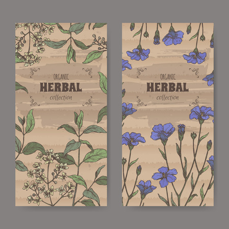 Two labels wuth Lawsonia inermis aka henna tree and Linum usitatissimum aka common flax sketch. Green apothecary series. Great for traditional medicine, or gardening.
