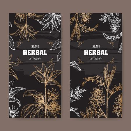 Two labels wuth Illicium verum aka star anise or badiane and Glycyrrhiza glabra aka liquorice sketch on black.