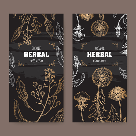 Two labels with Cinnamomum camphora aka camphorwood or camphor laurel and Dandelion aka Taraxacum officinale sketch on black. 向量圖像