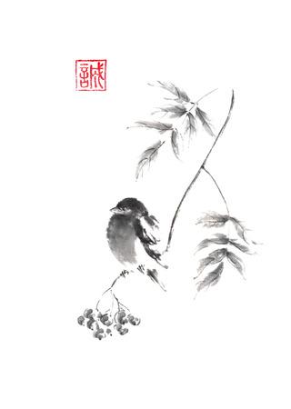 Bullfinch bird sitting on a branch of rowan tree Japanese style original sumi-e ink painting. 写真素材