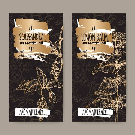 Two labels with Lemon balm aka Melissa officinalis and Schisandra chinensis sketch on black lace