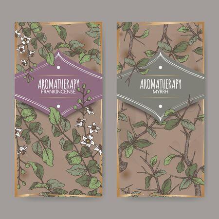 Two color labels with Boswellia sacra aka frankincense and Commiphora myrrha aka myrrh sketch on vintage