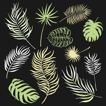 Set of hand painted ink palm leaves. Great for decor, patterns, greeting cards. Artwork for your design.