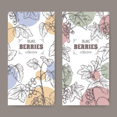 Set of two labels with Black currant aka Ribes nigrum and Red currant aka Ribes rubrum branch sketch. Berry fruits series. Great for traditional medicine, perfume design, cooking or gardening.