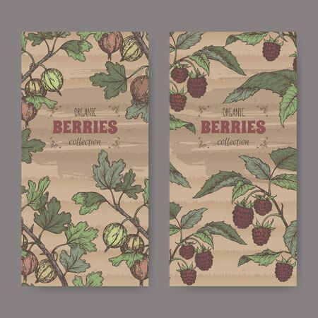 Set of two color lables with Red raspberry aka Rubus idaeus and Gooseberry aka Ribes uva-crispa sketch.