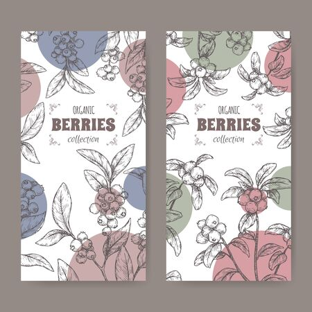 Set of two labels with blueberry aka Vaccinium corymbosum and Cranberry aka Vaccinium oxycoccos sketch. Berry fruits series. Great for traditional medicine, perfume design, cooking or gardening. Illusztráció