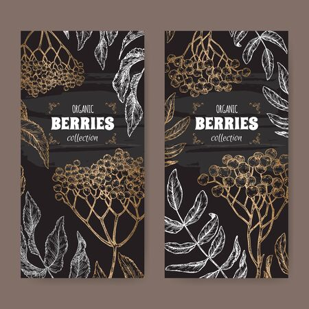 Set of two black labels with Sambucus aka elderberry and Rowan aka Sorbus aucuparia branch sketch. Berry fruits series. Illusztráció