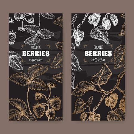 Two labels with garden strawberry aka Fragaria ananassa and Black mulberry aka Morus nigra branch sketch on black.
