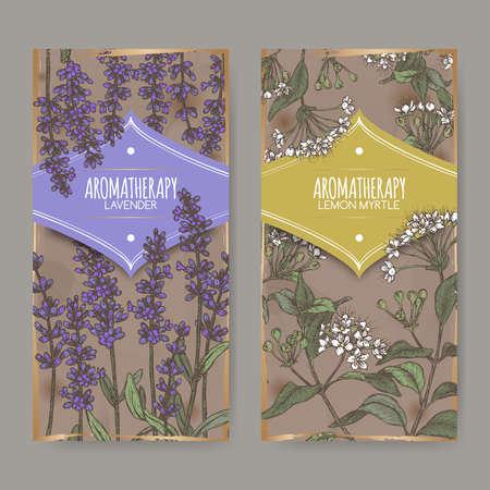 Two labels with Lavender aka Lavandula angustifolia and Lemon myrtle aka Backhousia citriodora color sketch. Illustration