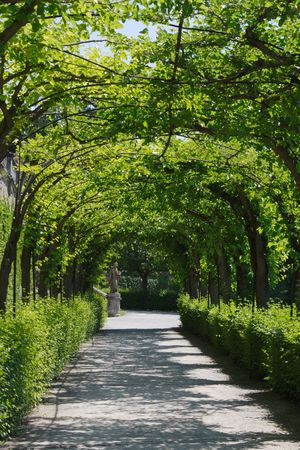 garden path photographed in Wuerzburg, Franconia, Bavaria, Germany Stock Photo
