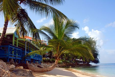 Westcoast Barbados,