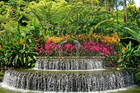 Botanical garden in Singapore Stock Photo
