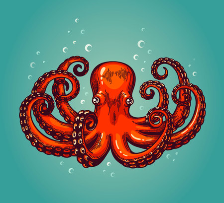 Octopus engraving. Vintage color engraving color illustration. Retro style card. Red octopus on blue background. Vector illustration