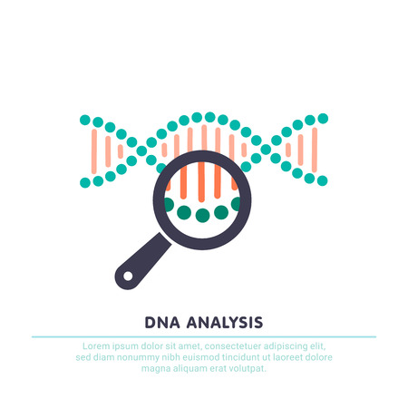 DNA analysis icon, genetics testing. dna chain in magnifying glass sign. Vectores