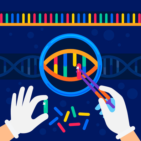 genome sequencing concept. Nanotechnology and biochemistry laboratory. The hands of a scientist working with a dna helix, genome or gene structure. Human genome project. Flat style vector illustration  イラスト・ベクター素材
