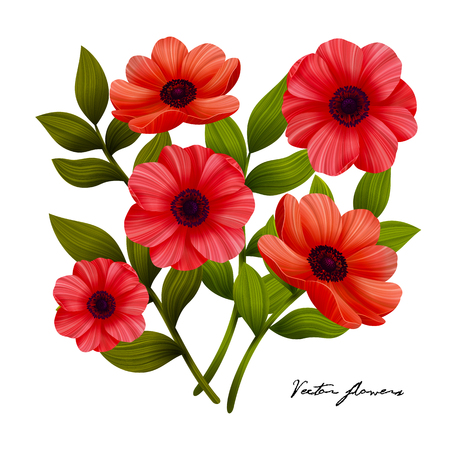 Flowers. Red poppies on white background. Beautiful red flowers. Vector illustration