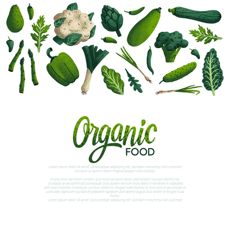 Organic food card design. Variety of decorative green vegetables with grain texture on white background. Farmers market, Organic food poster or banner design. Vector illustration Vectores