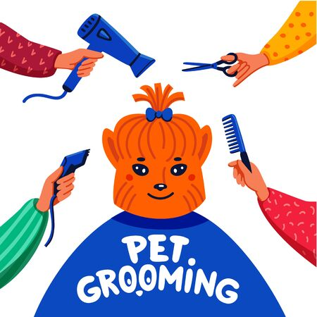 Pet grooming concept. Happy lap-dog and hands with comb, hair dryer, scissors and haircut clipper on white background. Dog care, grooming, hygiene, health. Flat style vector illustration