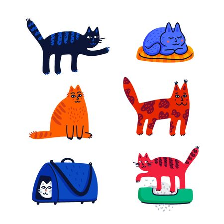 Pet grooming concept. Set of cartoon cats with different colored fur and markings standing sitting or walking. Cat care, grooming, hygiene, health. Pet shop, accessories. Flat style vector illustration on white background