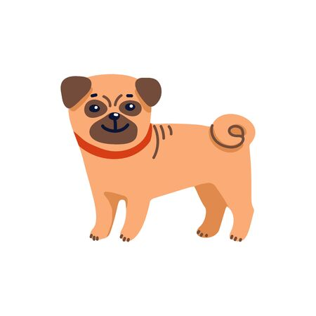 Happy cartoon puppy pug on white background. Dog beauty salon. Funny puppy character in the spa. Dog care, grooming, hygiene, health. Pet shop, accessories. Flat style vector illustration