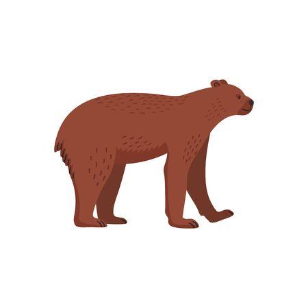 Extinct animals. Short-faced bear. Prehistoric extinct american bear. Flat style vector illustration isolated on white background