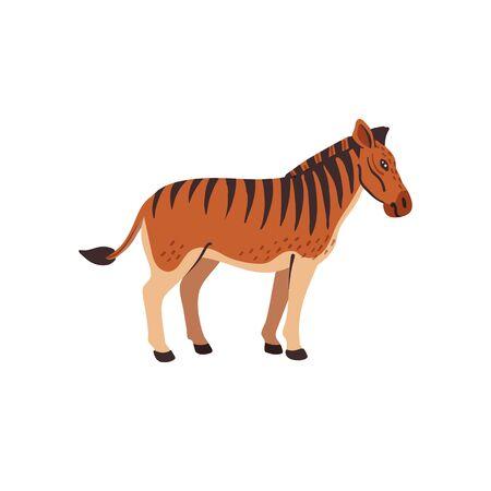 Extinct animals. Quagga. Prehistoric extinct north american striped horse, hybrid of zebra and horse. Flat style vector illustration isolated on white background
