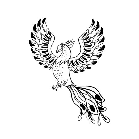 Magical creatures set. Mythological bird - phoenix. Doodle style black and white vector illustration isolated on white background. Tattoo design or coloring page, Line Art