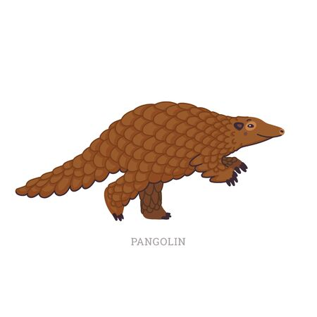 Rare animals collection. Pangolin or scaly anteaters. Unique mammals covered with scales. Flat style vector illustration isolated on white background Stock Illustratie