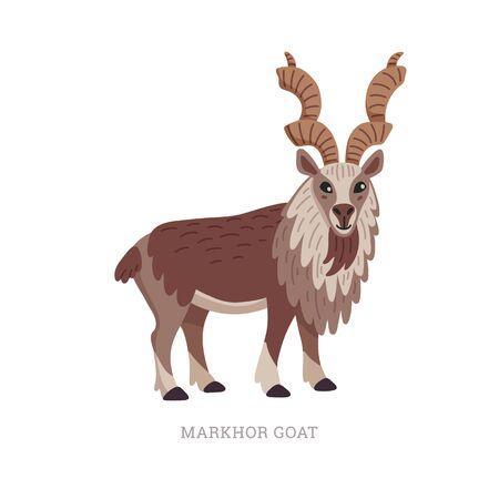 Rare animals collection. Markhor goat, Capra falconeri. National Pakistani animal, screw-horned goat. Flat style vector illustration isolated on white background