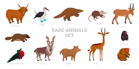 Rare animals collection. World Rarest Animals. Flat style vector illustration isolated on white background