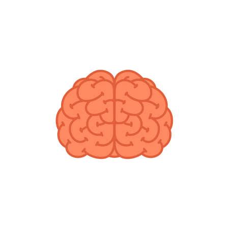 Brain. Human brain icon on white background. Vector illustration in flat cartoon style on white background 矢量图像