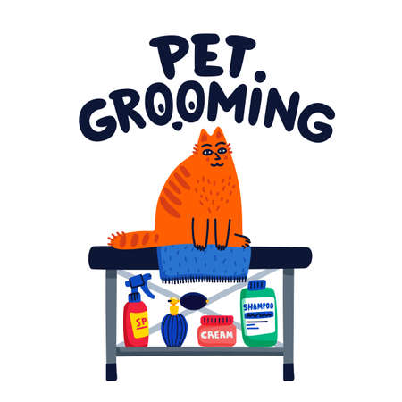 Pet grooming concept. Cat care, grooming, hygiene, health. Pet shop, accessories. Flat style vector illustration on white background.
