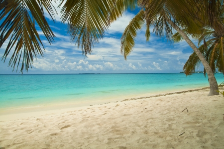 Tropical sandy beach with turquoise water