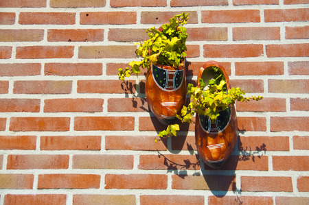 Wooden clog shoes on a brick wall serving as flower pot in the Netherlands