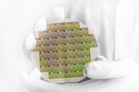 クリーン ルーム ・ ラボ内シリコン ・ ウエハを保持している白い手袋でハイテク産業エンジニア。