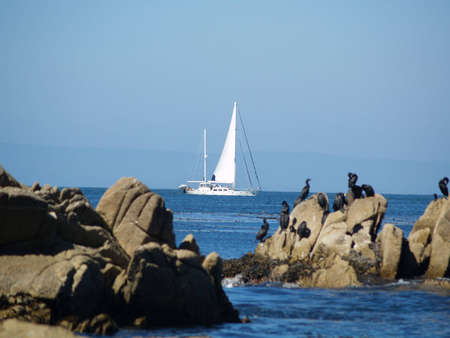 Sailboat framed by rocks in Monterey Bay
