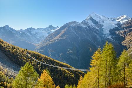 스위스 알프스에서 찰스 Kuonen 현수교. 494 미터로, 세계에서 가장 긴 현수교