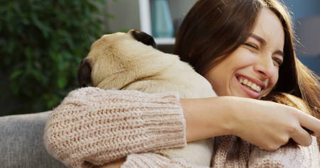 Close up of charming young woman in the pink sweater hugging her pug and laughing while sitting in the room at home. Portrait. Inside